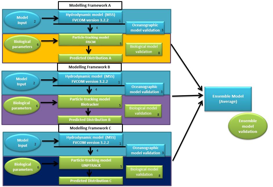 Proposed methodology for ensemble modelling.