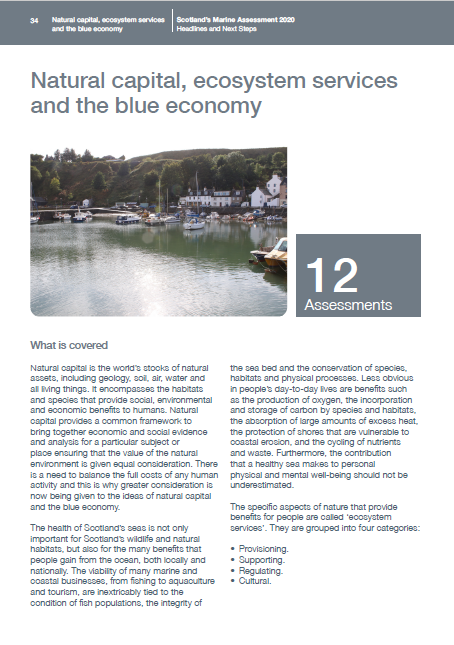 Natural capital, ecosystem services and the blue economy