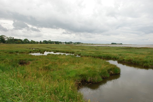 Saltmarsh occurs on most Scottish coasts. The largest areas are in the Solway Firth.