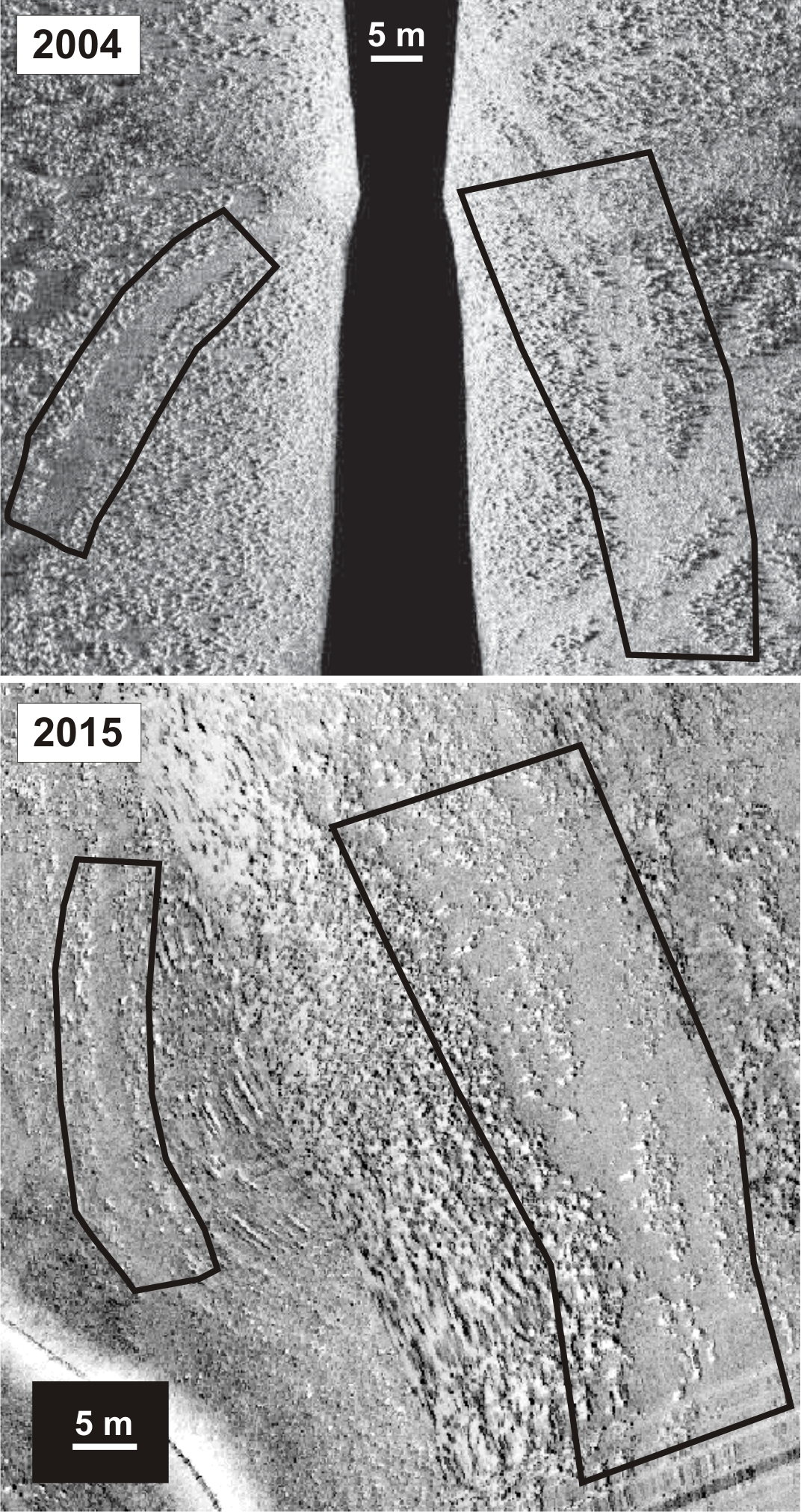 Figure 2. Sidescan imagery from surveys in 2004 and 2015 showing persistence of demersal fishing tracks through serpulid reef habitat in the same location in Loch Creran, Argyll. Similar regions of track delimited by black polygons.
