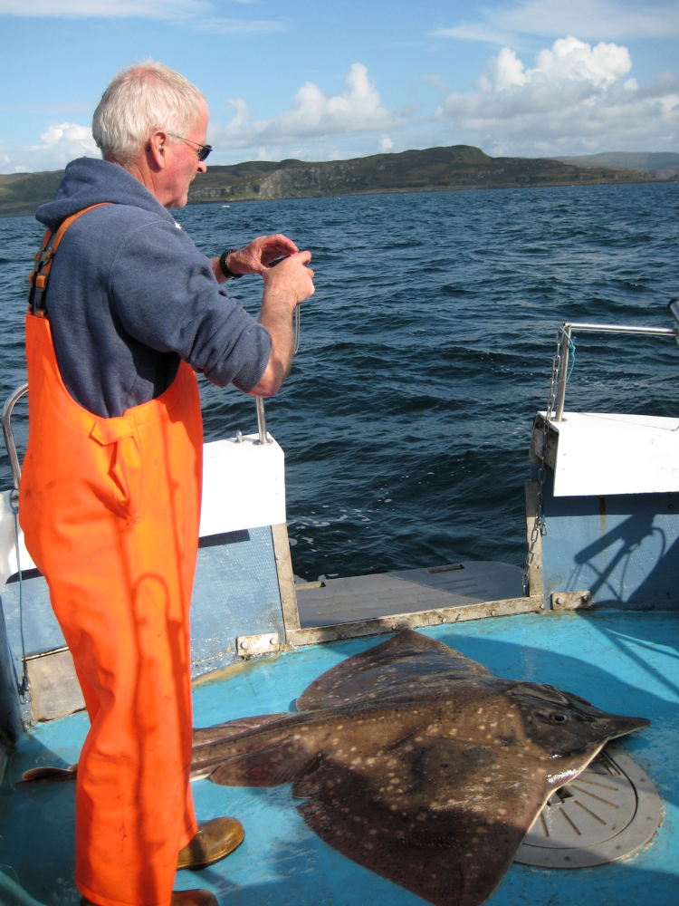 Figure 3: Skipper Ronnie Campbell photographing a skate for Skatespotter © NatureScot.