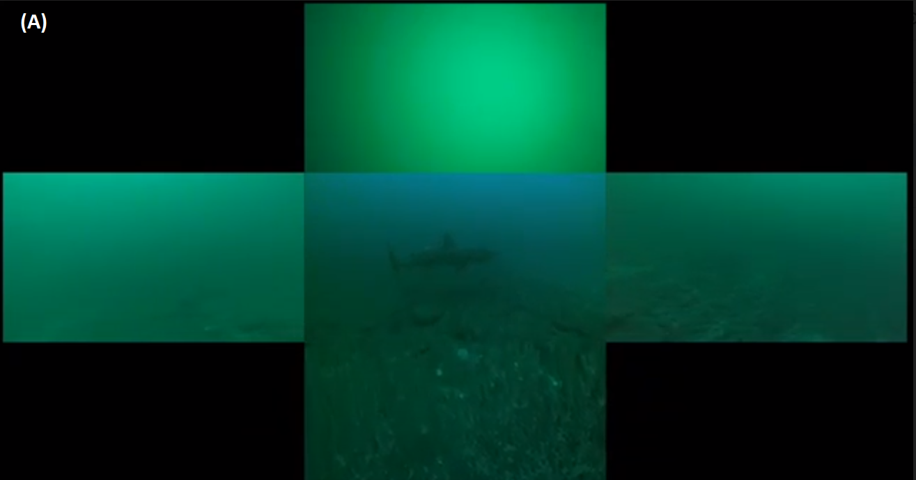 Figure 5: A.  Merged images from 5 video cameras aboard the AUV (centre image is forward, left, right, up and down). © Amy Kukulya, Oceanographic Systems Lab, WHOI.