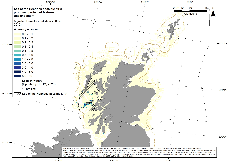 Figure 7: A. Basking shark effort-corrected sightings data. Based on work of Paxten et al., 2014.