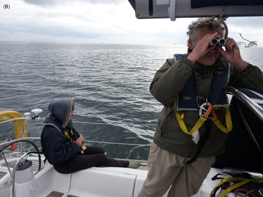 Figure 9: Examples of citizen science. B. Volunteers on board sailing vessel collecting basking shark sightings data - a project involving Wave Action and The Wildlife Trusts (Speedie et al., 2009).