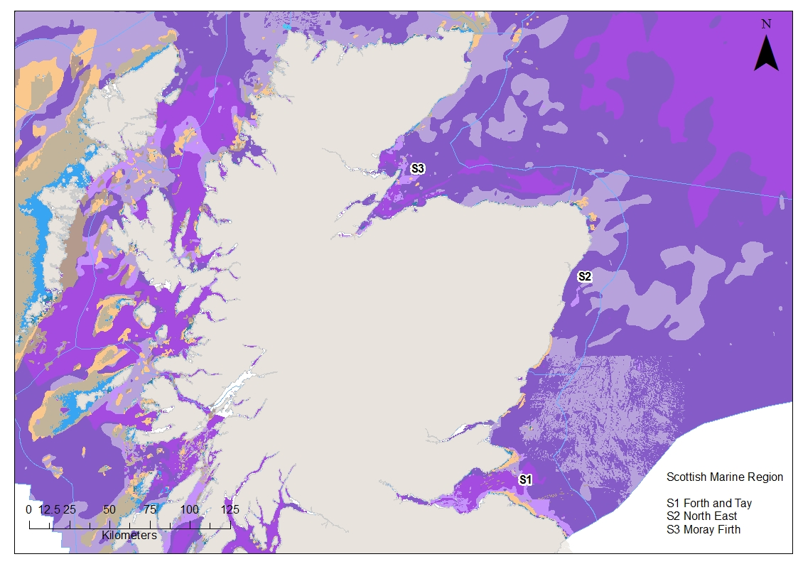 Moray Firth, North East and Forth and Tay EUNIS level 3 benthic habitat map