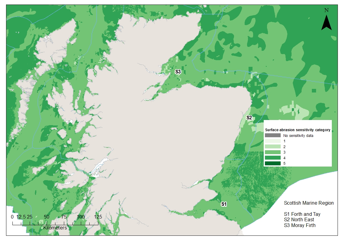 Moray Firth North East and Forth and Tay Benthic habitat and species sensitivities to surface abrasion