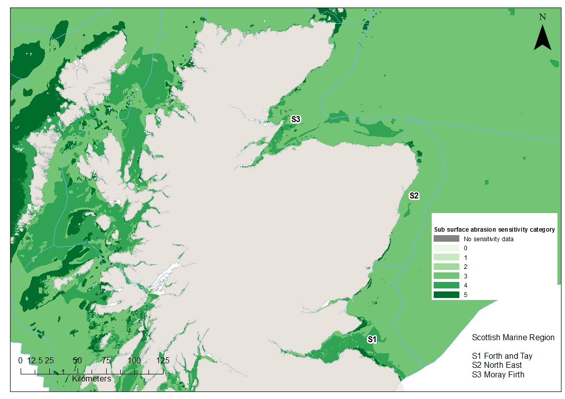 Moray Firth North East and Forth and Tay Benthic habitat and species sensitivities to sub-surface abrasion