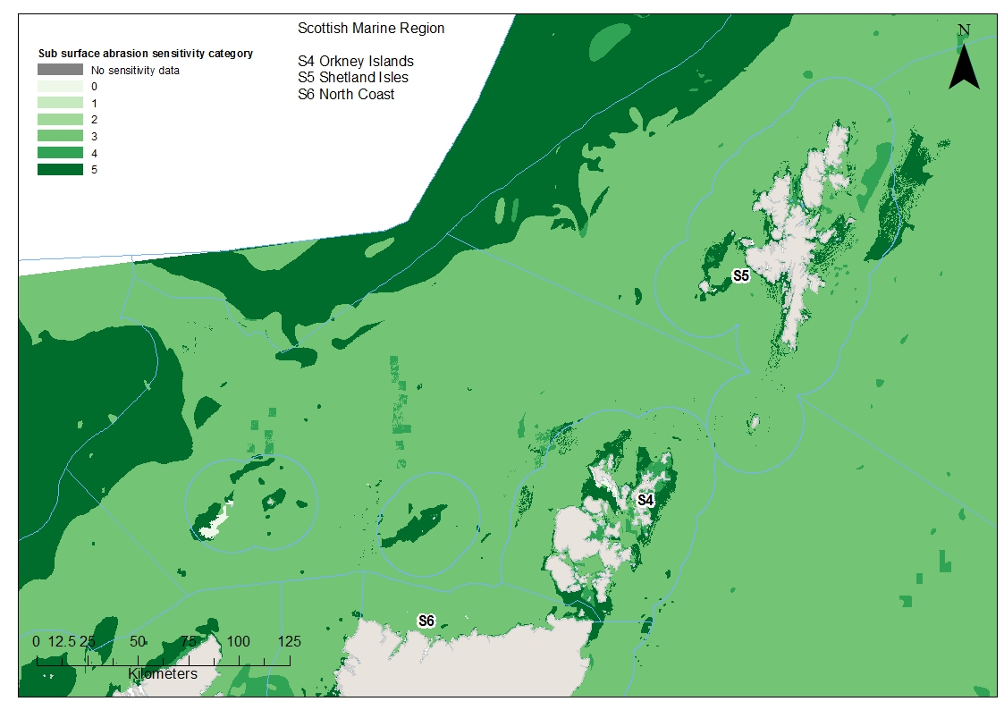Orkney North Coast and Shetland Benthic habitat and species sensitivities to sub-surface abrasion