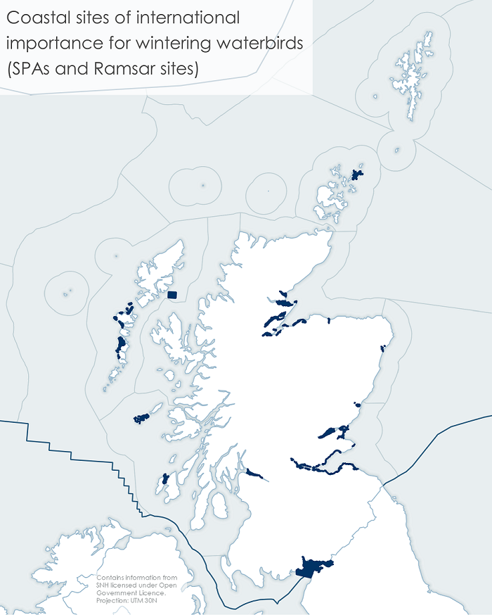 Figure 1: Sites of international importance for wildfowl and wader species together with Scottish Marine Regions.