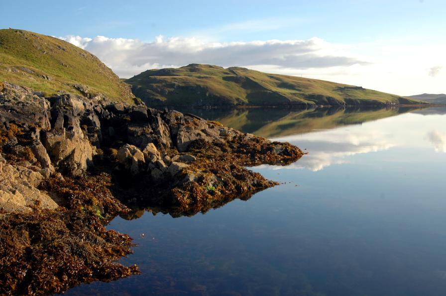 Rocky shore around Sullom Voe © Jon Moore, Aquatic Survey & Monitoring Ltd (ASML)