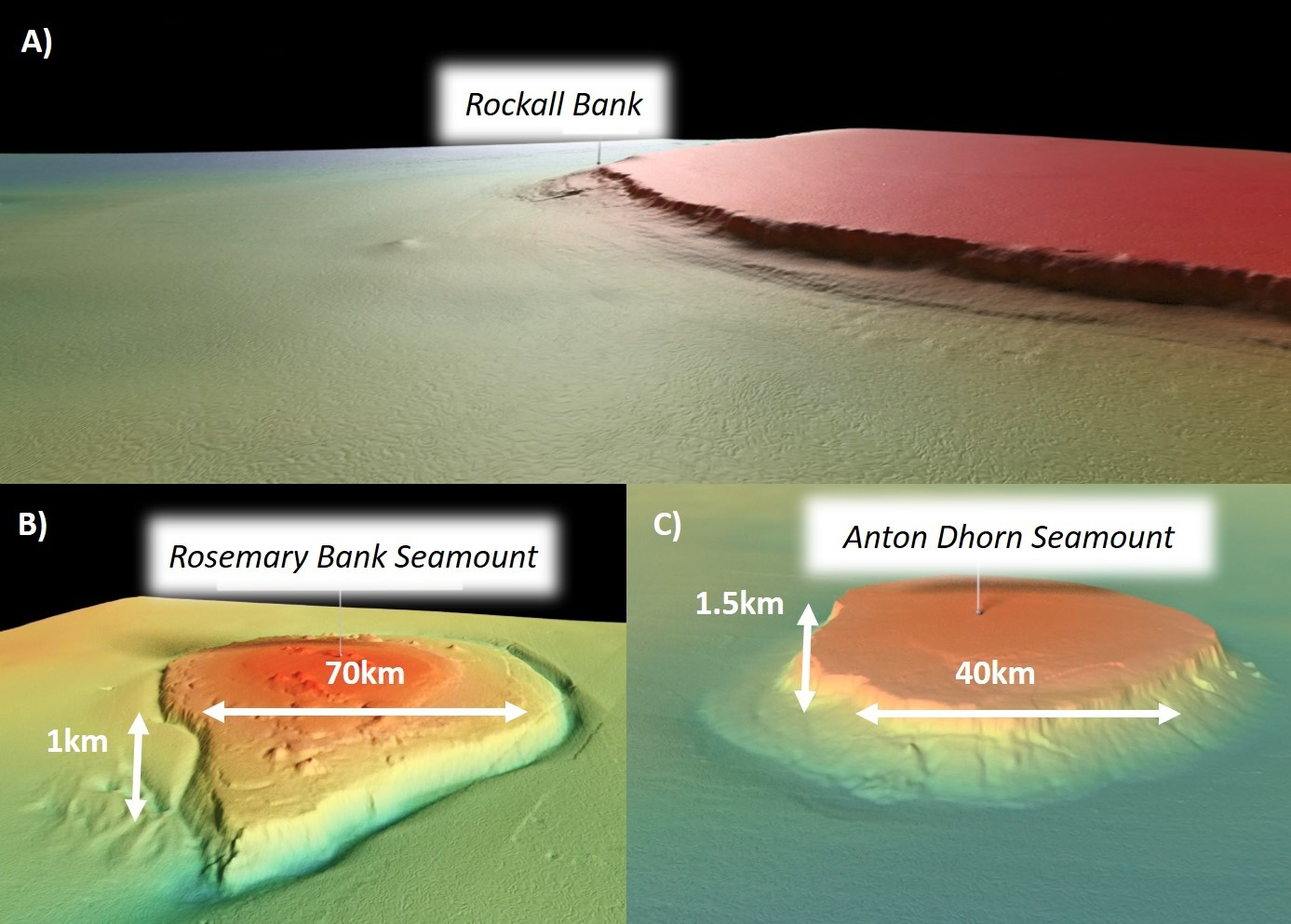 Multibeam images of Rockall Bank (bottom) and Anton Dhorn and Rosemary Bank Seamounts (top) (© JNCC)