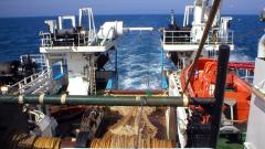 Scotia operational