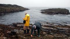 MarClim survey in Orkney © John Baxter