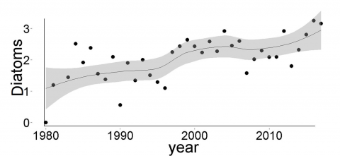 trends in log10+1 annual abundances of diatoms: CPR –North East