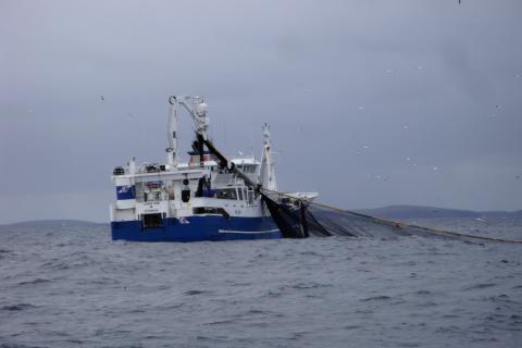 Fishing vessel Lunar Bow hauling the net © John Dunn, Marine Scotland