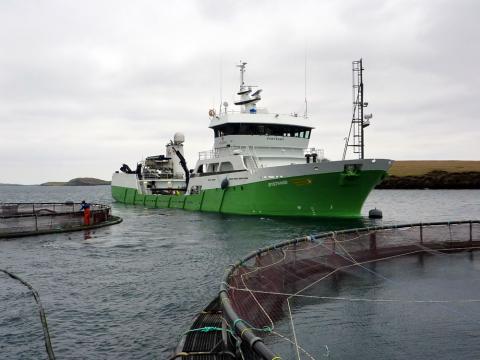 Wellboat delivering salmon to Shetland © Adrea Warwick, Marine Scotland