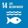 SDG 14 - Life Below Water